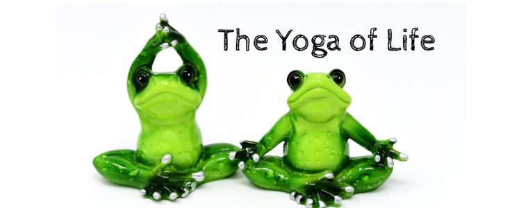 The Yoga of Life